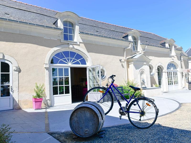 Balade vélo saumur vins